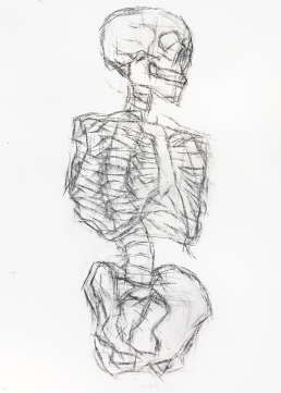 skeletonDrawing02